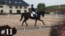 Брависсимо 70.8 Тест FEI для 5 летних лошадей. Вента-Арена Санкт-Петербург 15.06.2019