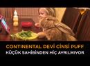 'Continental Devi' cinsi tavşanı evde tutmak