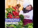 Ярмарки выходного дня в Москве стали круглогодичными Москва 24
