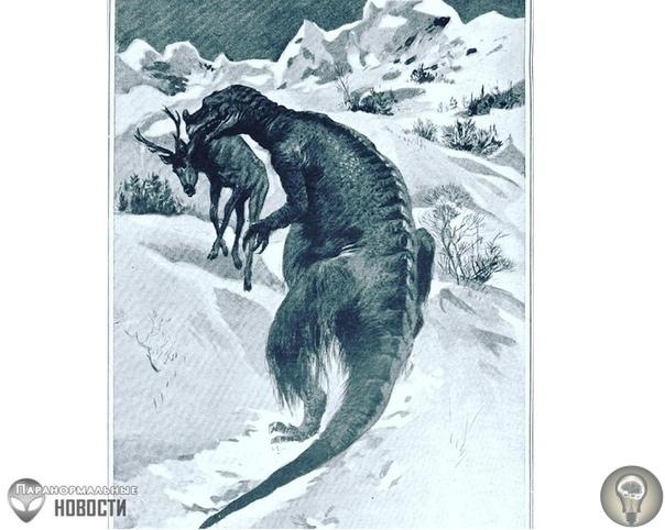 Странный случай наблюдения живого динозавра на... Крайнем Севере Время от времени люди наблюдают в отдаленных частях Земли животных, похожих на доживших до наших времен динозавров. Чаще всего