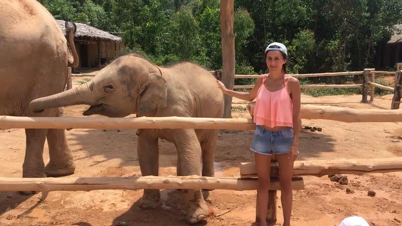 Я и слоники