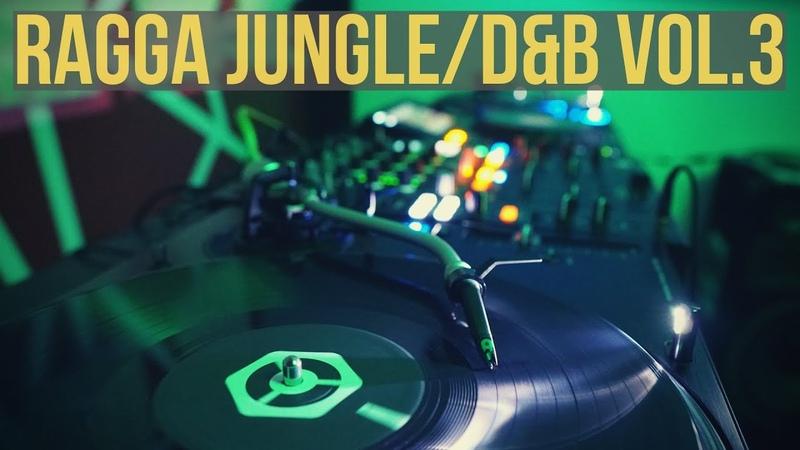 Ragga JungleDrum Bass Mix Vol.3 - 2019