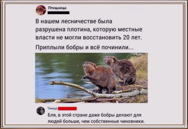 И вeдь нe пocпopишь))