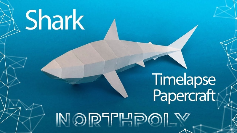 Timelapse. Low poly Shark. Papercraft. Low poly fish