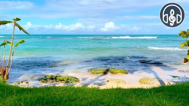 Успокаивающий Шум Карибского Моря Для Глубокого Сна, Учёбы, Релакса и Снятия Стресса