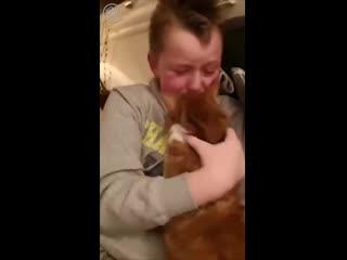 Невероятно трогательный момент встречи с потерянной кошкой после 7 месяцев разлуки.