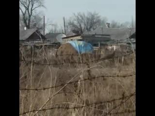 В селе Калбатау местный житель укрывает стог сена национальным флагом Республики Казахстан.