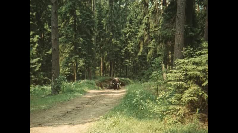 Долгая дорога в дюнах. 7 серия. 1980