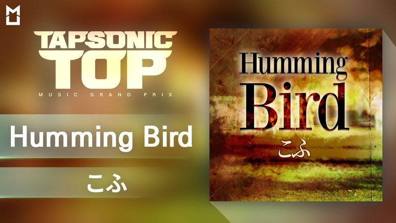 【TAPSONIC TOP】 Humming Bird - こふ(kohu)