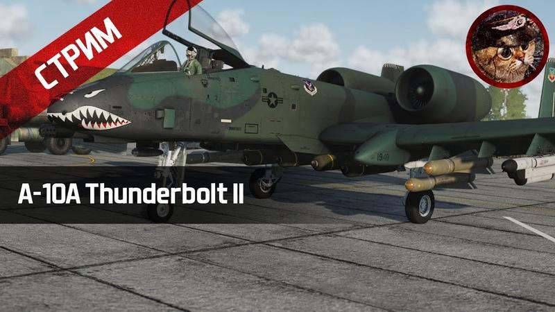 Штурмовка на A 10A Thunderbolt II DCS World stream WaffenCatLive