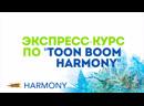 Экспресс-курс TB Harmony (пред-заказ)