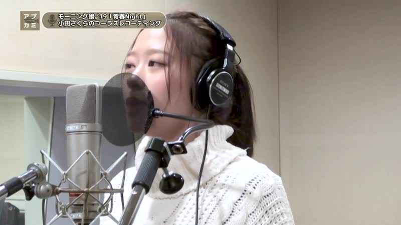 «Seishun Night» Oda Sakura - vocal recording (Upcoming 146 1872019)