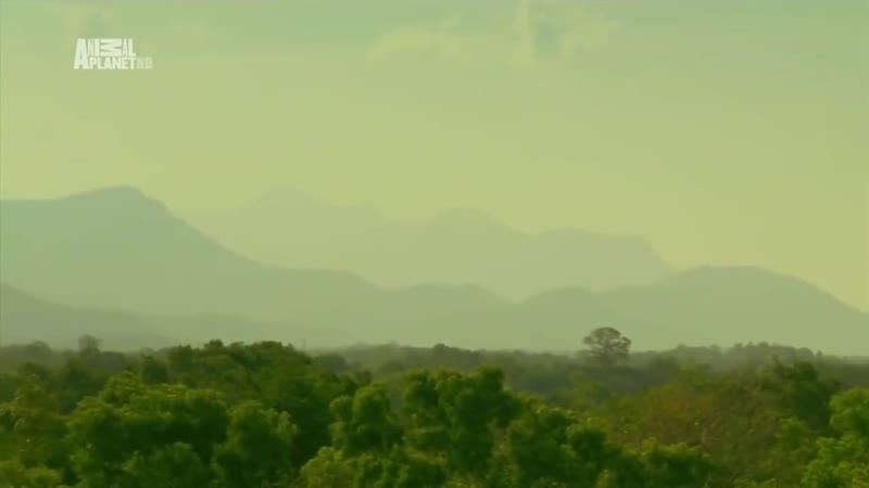 Неизведанные острова 4 Шри Ланка Sri Lanka