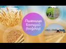 5 главных слов. Пшеница - богъдай boğday