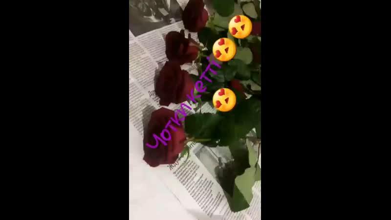 VID_22290106_234927_399.mp4