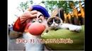 Приколы с котами С ОЗВУЧКОЙ – Смешные ЖИВОТНЫЕ – УРАР на пол часа - PSO