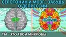СЕРОТОНИН - твой источник счастья. Влияние на мозг и пр. Как позабыть о депрессии