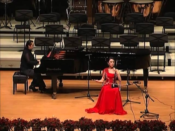 Why are the Flowers Fiery Red 花儿为什么那样红 Erhu(二胡)- Yang Xue 杨雪