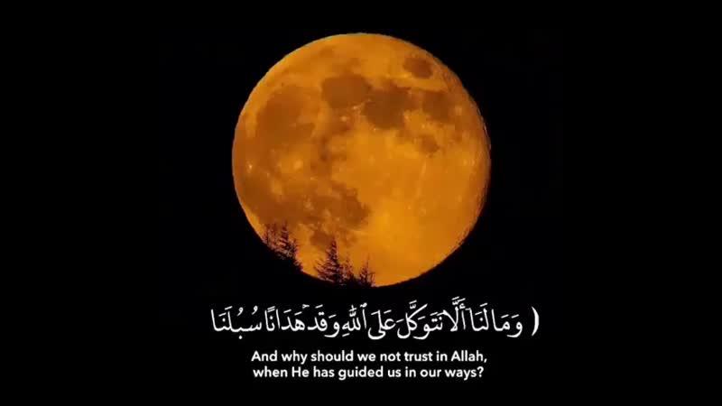 ' أكتب شي تؤجر عليه speech balloon pray type 1 2 heart ️ القارى ؛ إسلام صبحي وَمَا لَنَا أَلَّا نَتَوَك 480 X 480 m