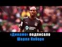 Динамо подписало Каборе! Топ-усиление!