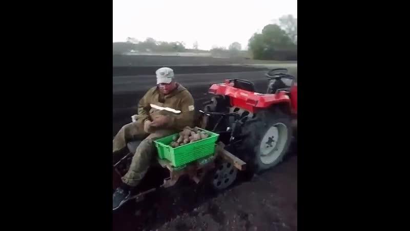 Видеофайл №001. Посадка картофеля в РБ с применением нанотехнологий