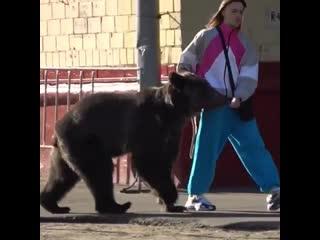 Tommy cash прогулка с медведем.