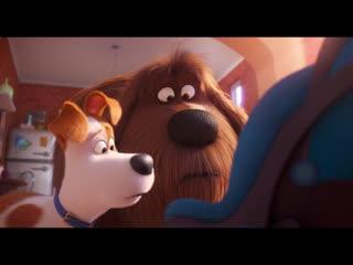 Тайная жизнь домашних животных 2 / The Secret Life of Pets 2.Финальный трейлер (2019) [1080p]