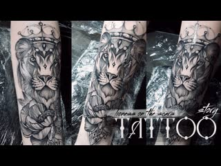 Tattoo story lioness on the scars
