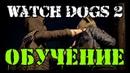 Прохождение игры Watch Dogs 2 Обучение