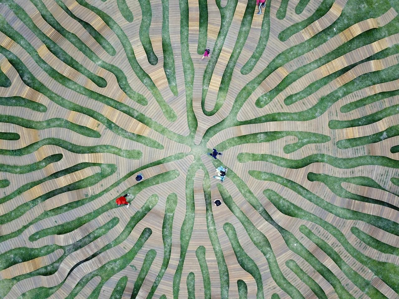 Скамья как произведение искусства в городском парке Сеула