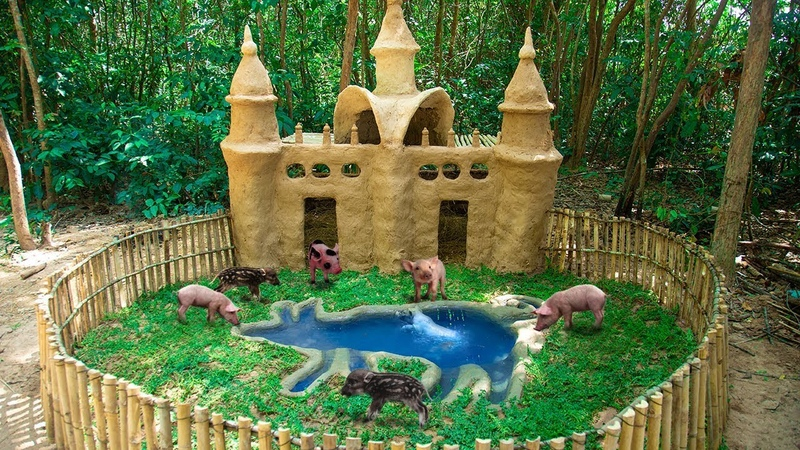Rescue Wild Baby Boar From Wild Animals and Building Safety Pig Habitat with pool