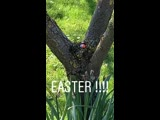 Gary Barlow Instagram 21-04-19