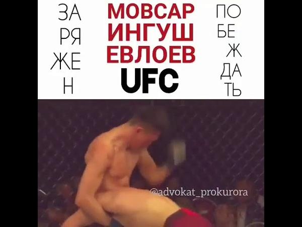 Мовсар Евлоев Первая Победа в UFC