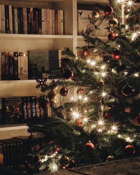 Наша ежегодная подборка книг и фильмов, которая поможет вам окунуться в зимнюю атмосферу и настроиться на праздничный лад