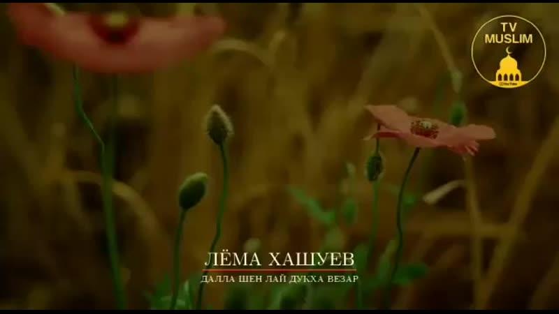 Za_kra_lema.khashuev_95-20190614-0001.mp4