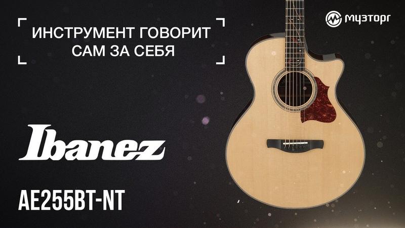 Инструмент говорит сам за себя - Ibanez AE255BT-NT