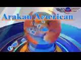 FB_VIDEO_SD_1555937084361(360P).mp4