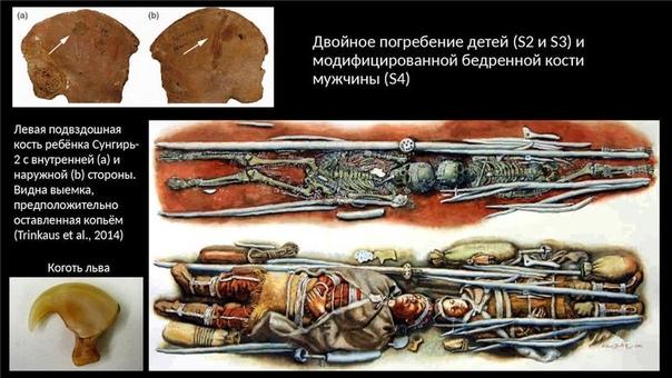 Сунгирь: ученые показали, как выглядели люди, жившие под Владимиром 30 000 лет назад