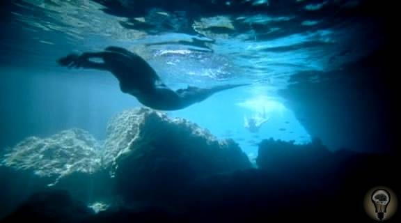 В Шотландии запретили рыбную ферму из-за того, что она будет мешать русалкам.