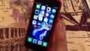 Как установить приложение 1xBet на Iphone. Подробная инструкция