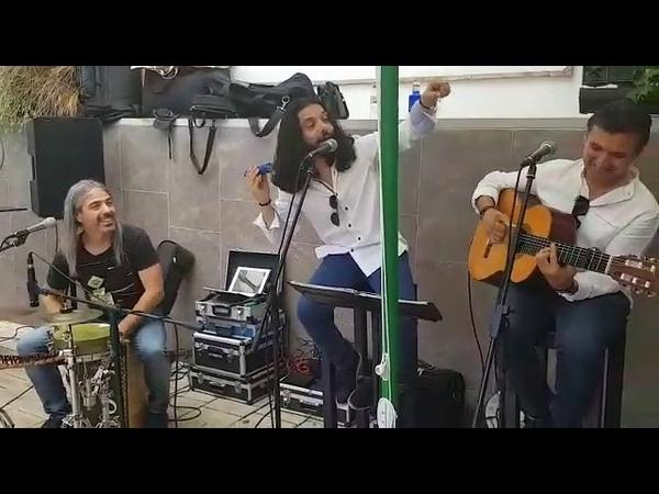 Paradita Flamenca Flamenco en vivo