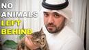 NO ANIMALS LEFT BEHIND