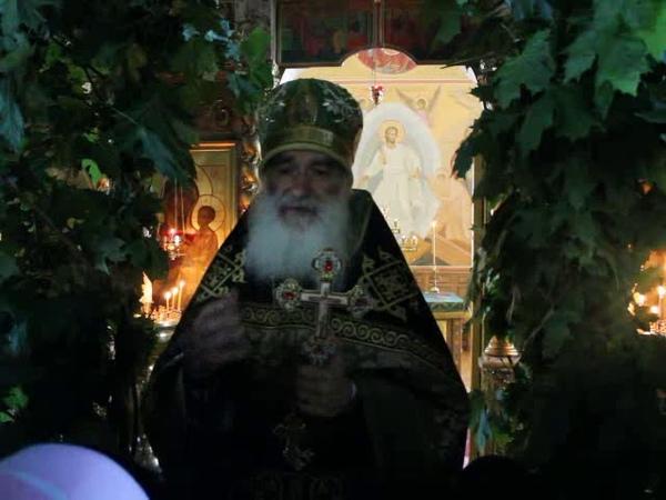 Проповедь наст. Св.Никольского хр.п. Ракитное прот. Николая Германского на Пятидесятницу