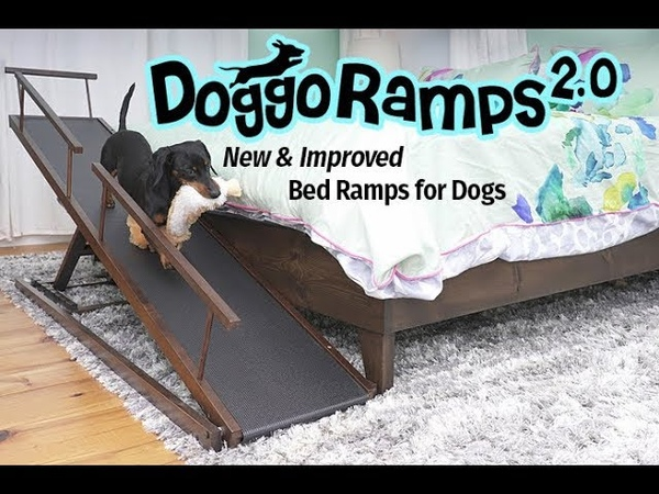 DoggoRamps 2.0 - The New Improved Bed Ramps for Dogs!