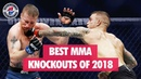 Best MMA Knockouts of 2018 UFC, Bellator, LFA