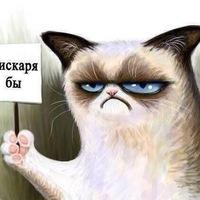 Анкета Ярослав Скрипка