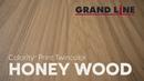 Новый цвет Colority Print - Honey Wood