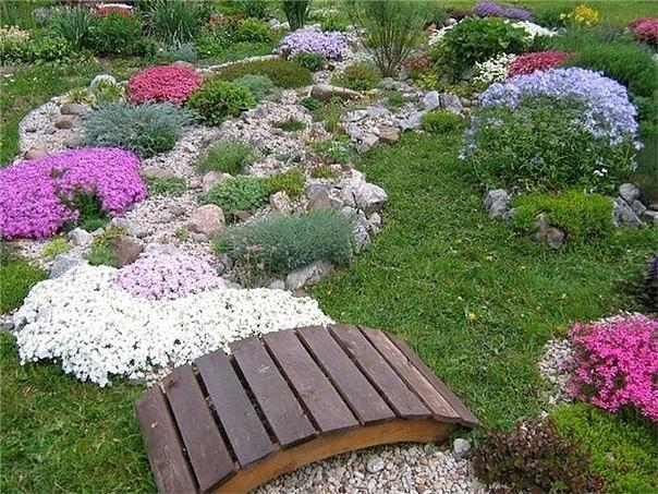 Идея сухих ручьев в саду