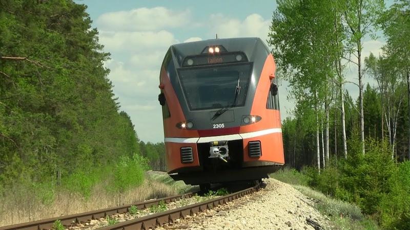 Штадлерский дизель поезд 2305 на перегоне Тюри Лелле Stadler DMU 2305 between Türi and Lelle