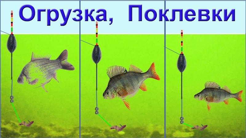 Огрузка снасти под разные условия ловли ловля В ПРОВОДКУ поклевки на поплавок выставление глубины